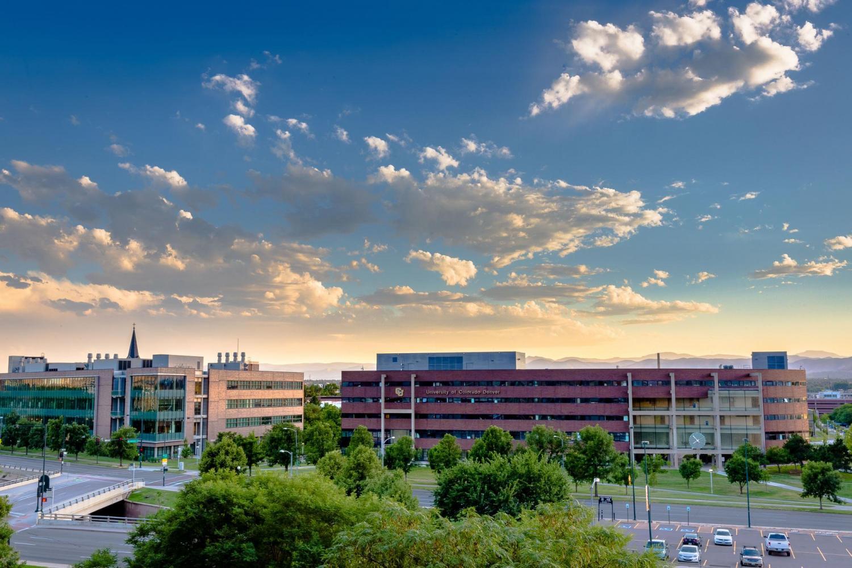 Undergraduate Advising Cu Denver College Of Liberal Arts And Sciences