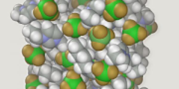 Molecular Modeling Track Photo