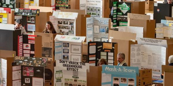 projects on display
