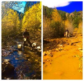 Acid mine drainage effects on a stream