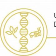 Integrative Biology Banner