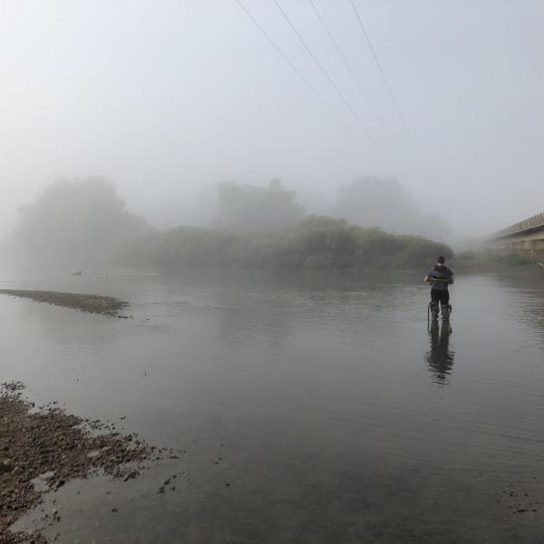 Researcher standing in the water with fog