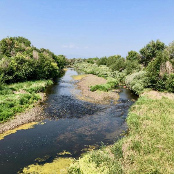 Landscape of a river or creek