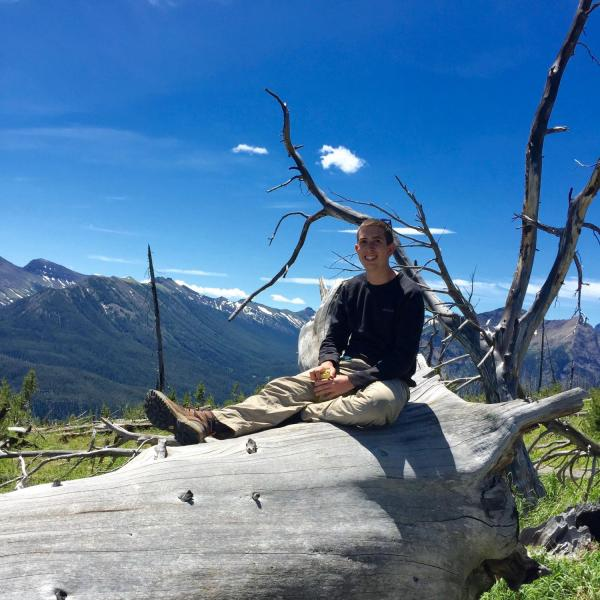 Researcher sitting on a large fallen tree
