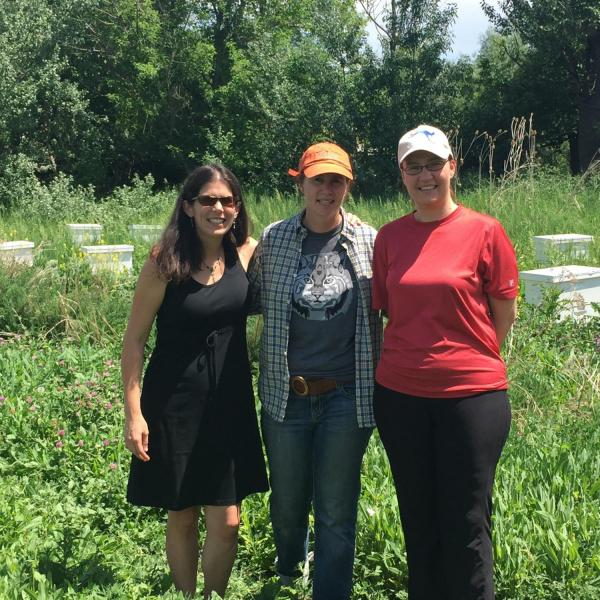 Group photo of researchers in front of beehives