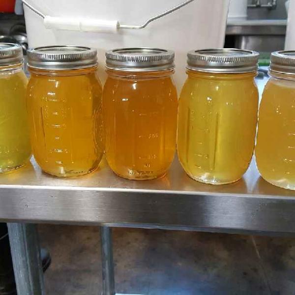 Samples in mason jars