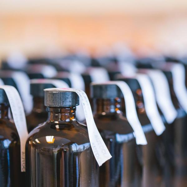 Rows of lab cultures in bottles