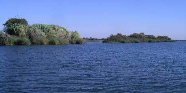 Freshwater research site