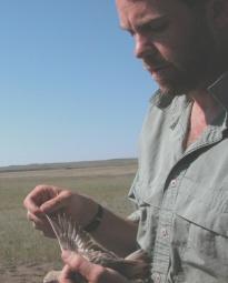 Michael Wunder, Assistant Professor of Integrative Biology
