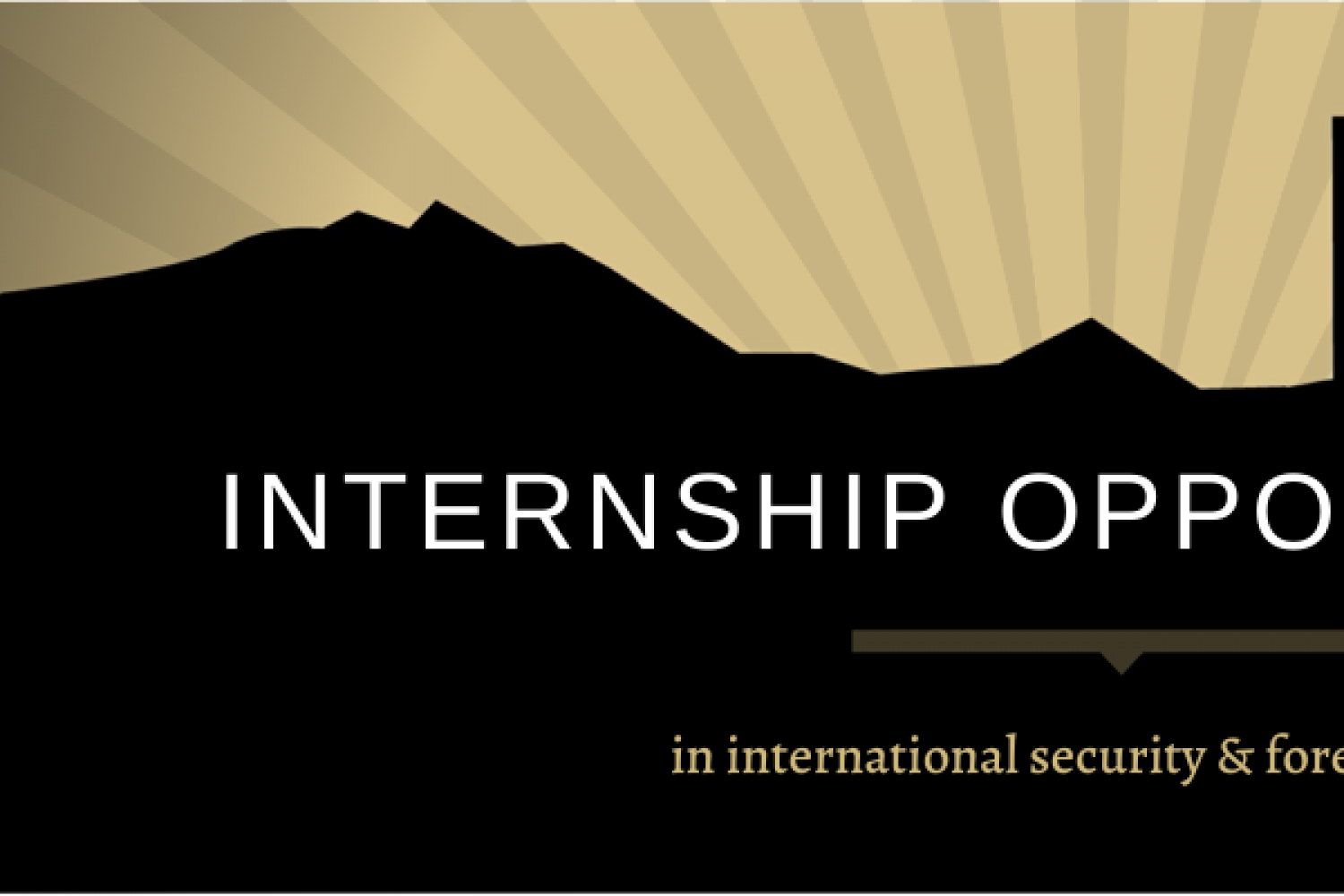 internship opportunities in international security & foreign policy graphic with denver silhouette